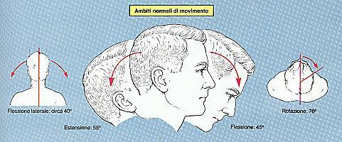 Gemangioma di una spina dorsale reparto cervicale